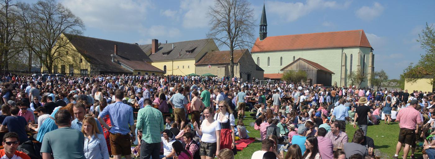 Palmator Regensburg 2021